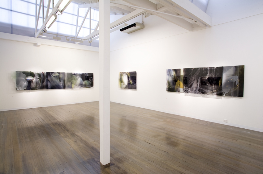 JANET LAURENCE   Janet Laurence  2008 Installation view