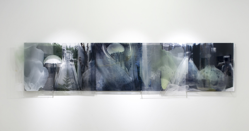 JANET LAURENCE   Forensic Sublime  2008 Mirror, oil glaze and duraclear on shinkolite 100 x 455 cm