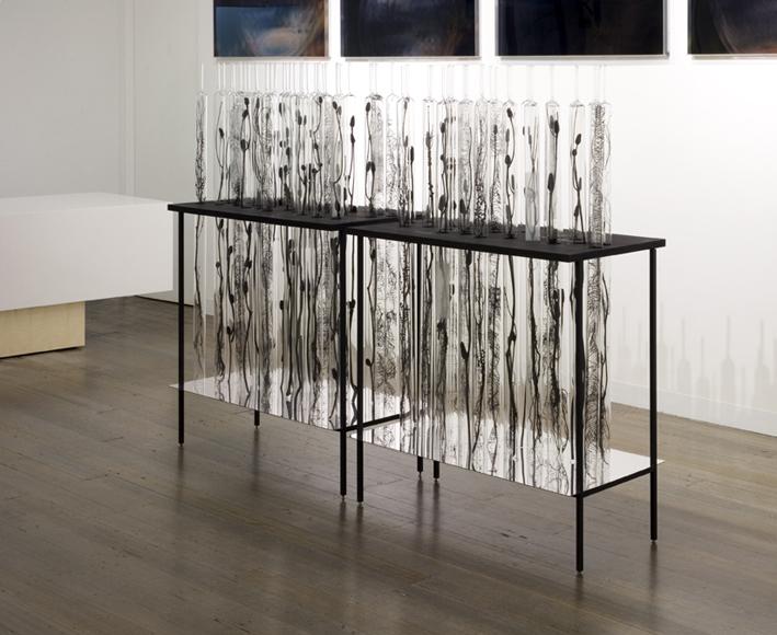 JANET LAURENCE   Natural History  (2 units) 2008 Glass vials, botanical specimens, wood, steel, polished aluminium mirror