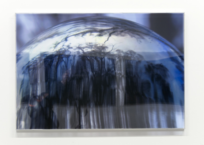 JANET LAURENCE   Last Glance in the Glass I  2008 Duraclear, polished aluminium, acrylic 70 x 100 cm