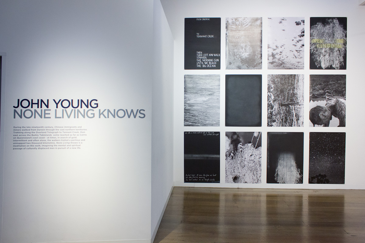 JOHN YOUNG   None Living Knows  Install View 2017