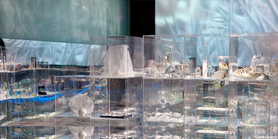Janet Laurence,  Deep Breathing:  Resuscitation for the Reef, installation view