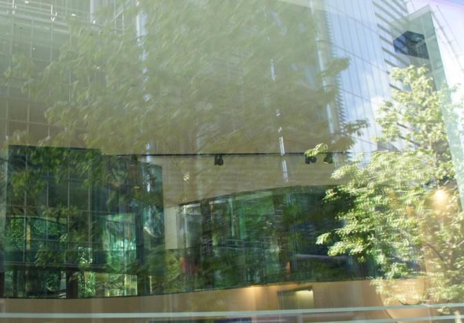 Laurence Tarkine Macquarie Bank 2011 03.jpg