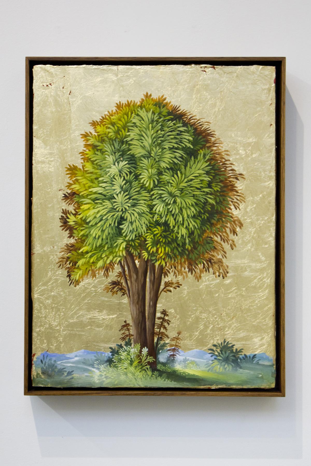 DAVERINGTON_Portrait of a tree No6_ARCONE.jpg