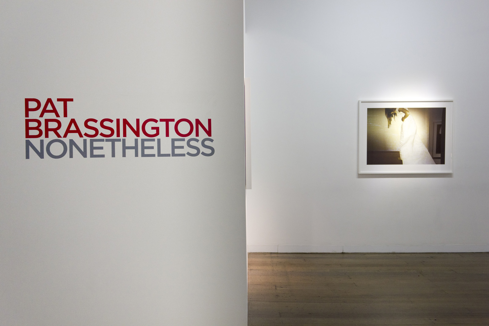 PAT BRASSINGTON   Nonetheless  Install View 2018