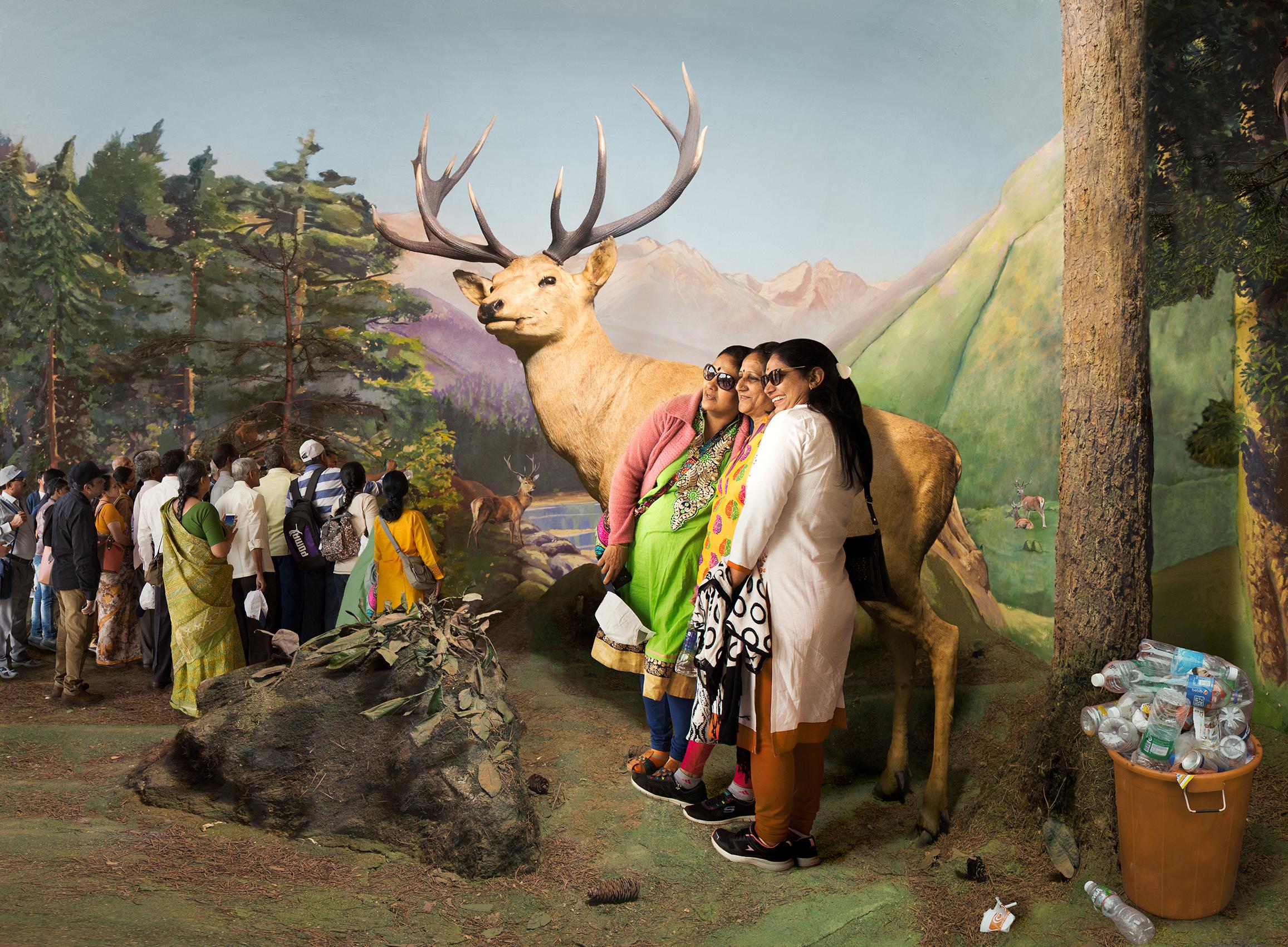 Anne Zahalka, Krazy Kashmiris in Stagland ,2018, pigment ink-jet print on canvas, 100 x 136 cm
