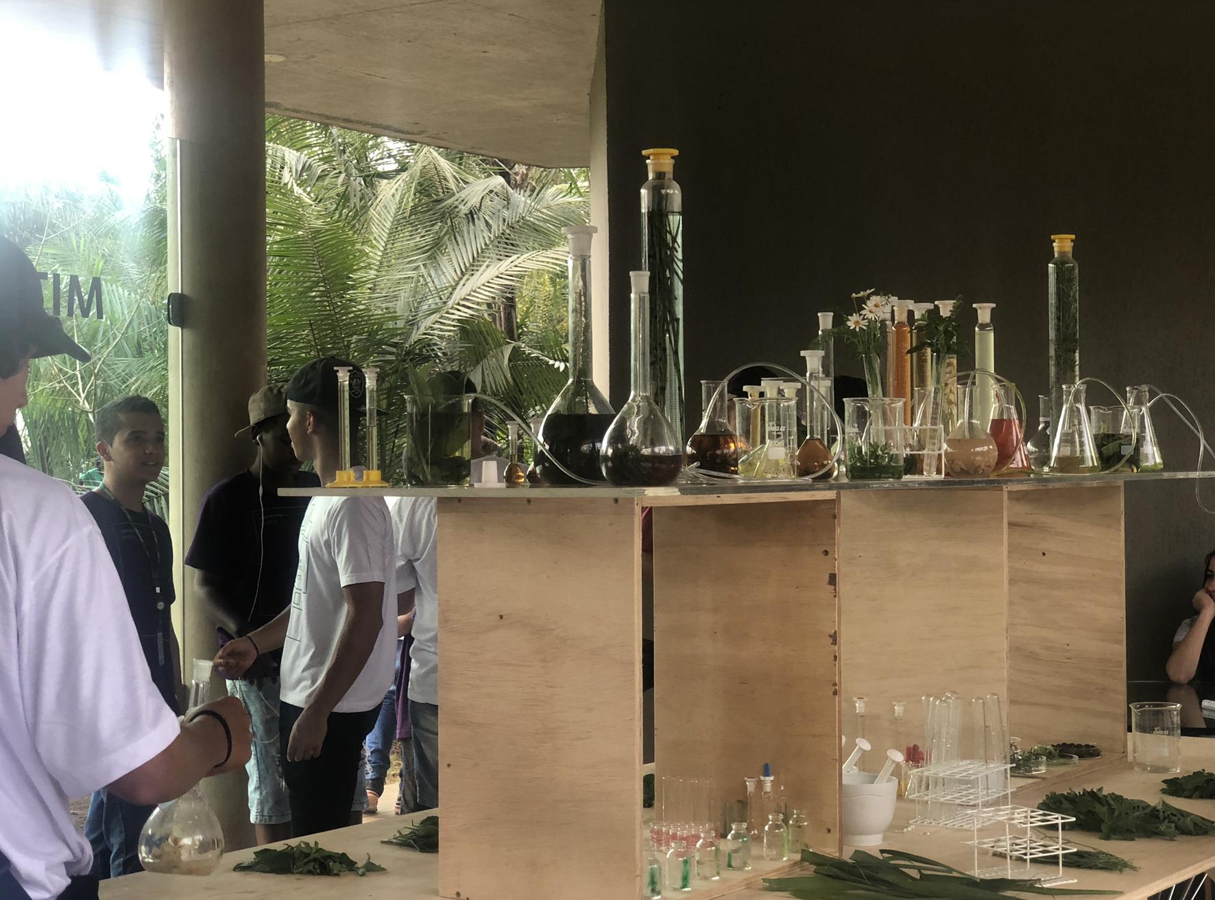 Janet Laurence, Installation View,  The Elixir Lab , Inhotim Institute, Brazil, 2018