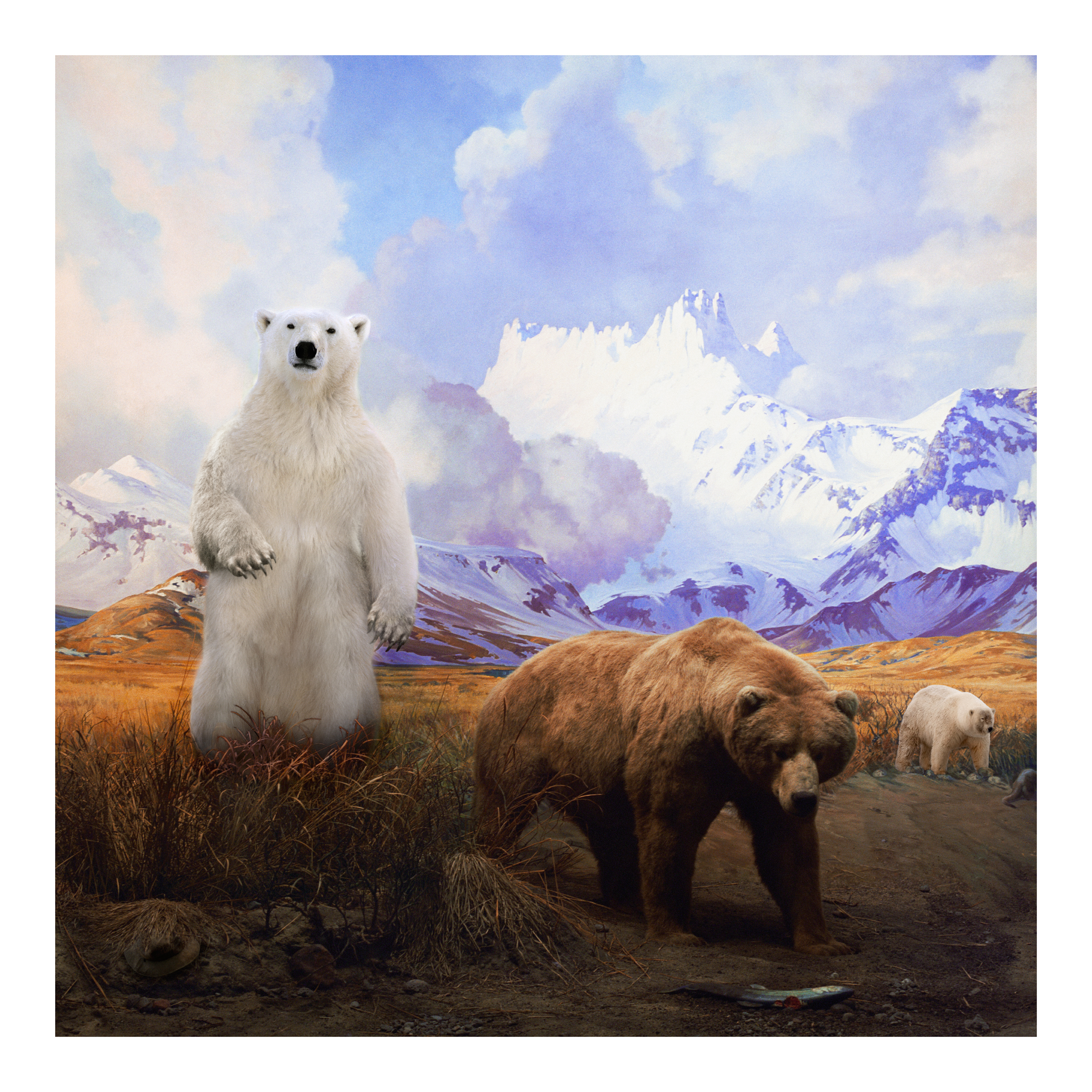 ANNE ZAHALKA   Mama Bear, Papa Bear and Baby Bear  2017 Archival pigment inks on rag paper Edition of 10 Source: American Museum of Natural History 80 x 80 cm