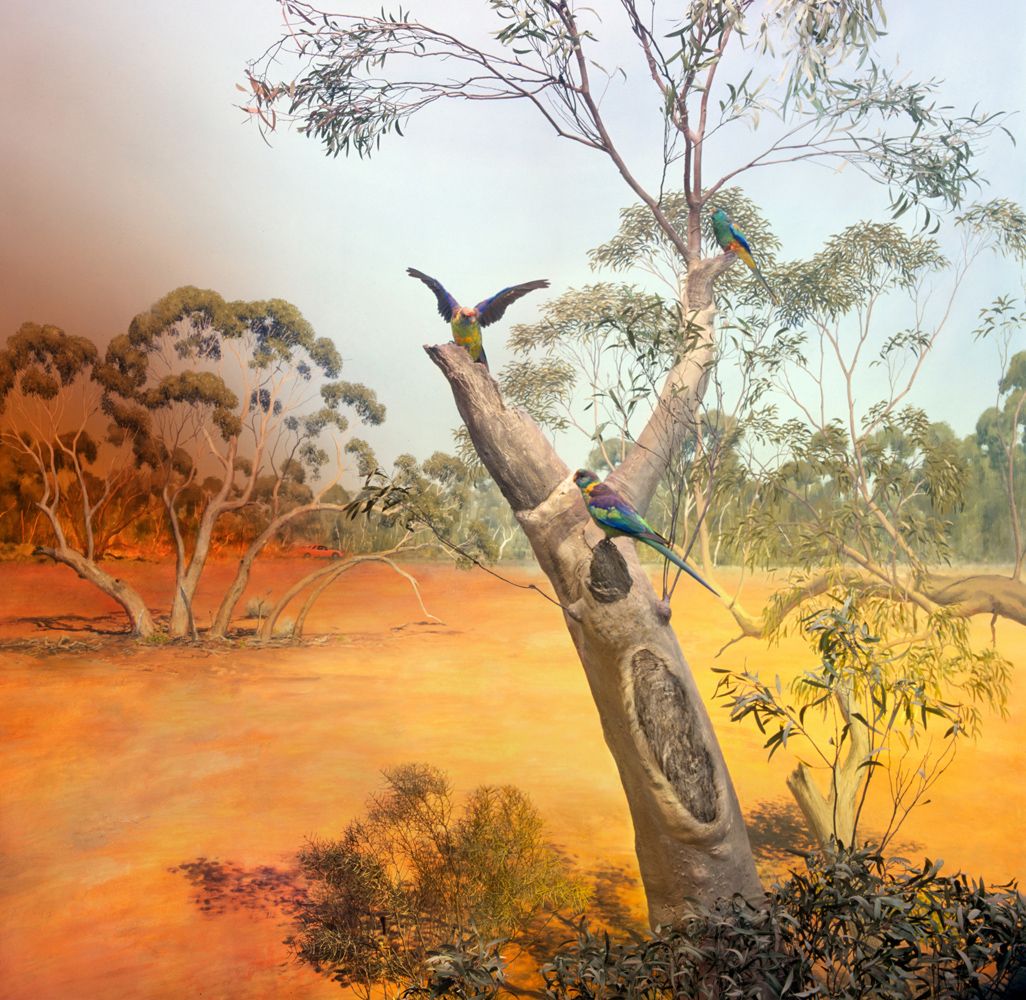 Anne Zahalka,  The Mallee, near Benetook in Sunraysia Region of Victoria , 2019, archival pigment ink on rag paper, 80cm x 80cm. Source: Museums Victoria.