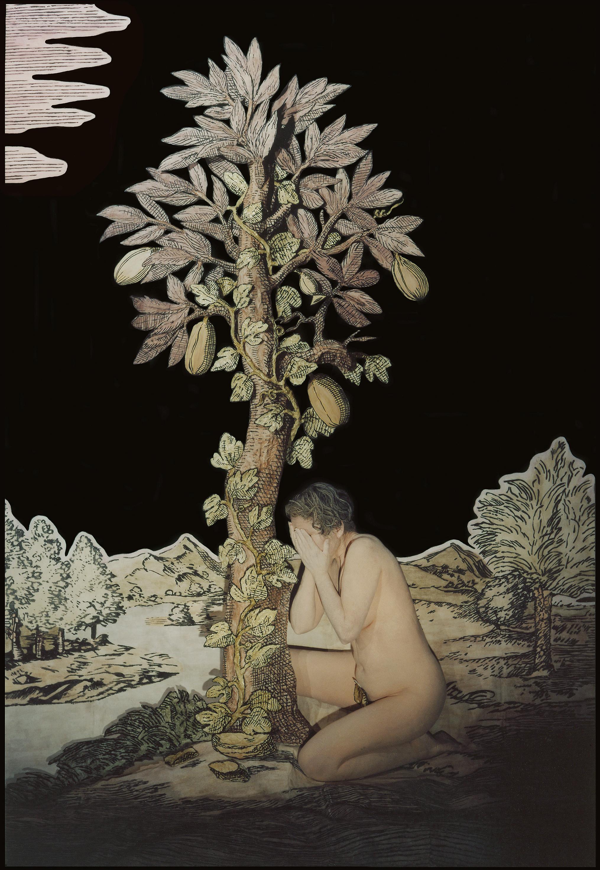 ROSE FARRELL & GEORGE PARKIN   Darkening Fields, Act Three  the series  Random Acts  2004/05 Type C Photograph 136 x 100 cm