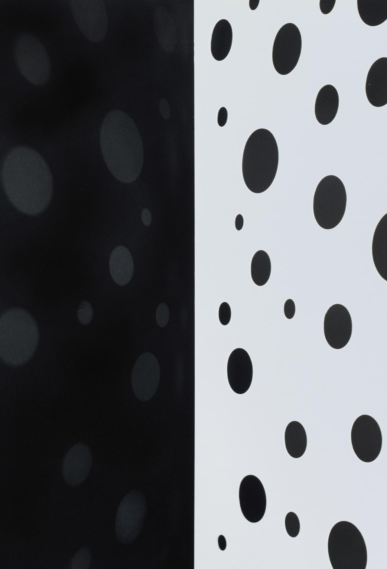 JACKY REDGATE   Light Throw (Mirrors) Fold - Black and White  2019 Chromogenic photograph handprinted 185 x 127 cm