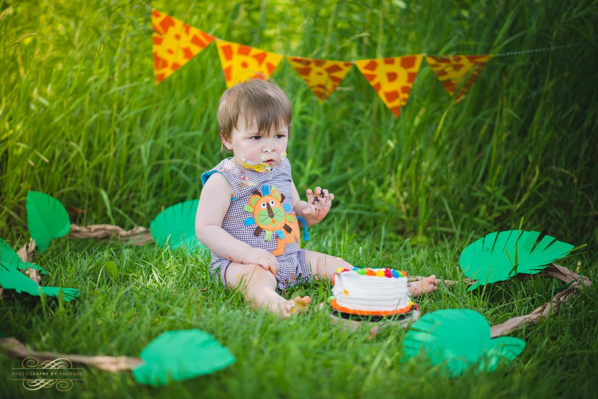 Photography By Andrade Birthday Cake Smash-34.jpg