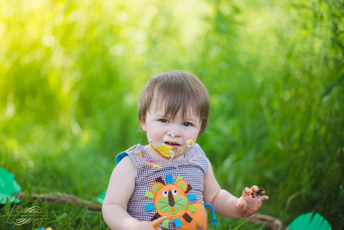 Photography By Andrade Birthday Cake Smash-49.jpg