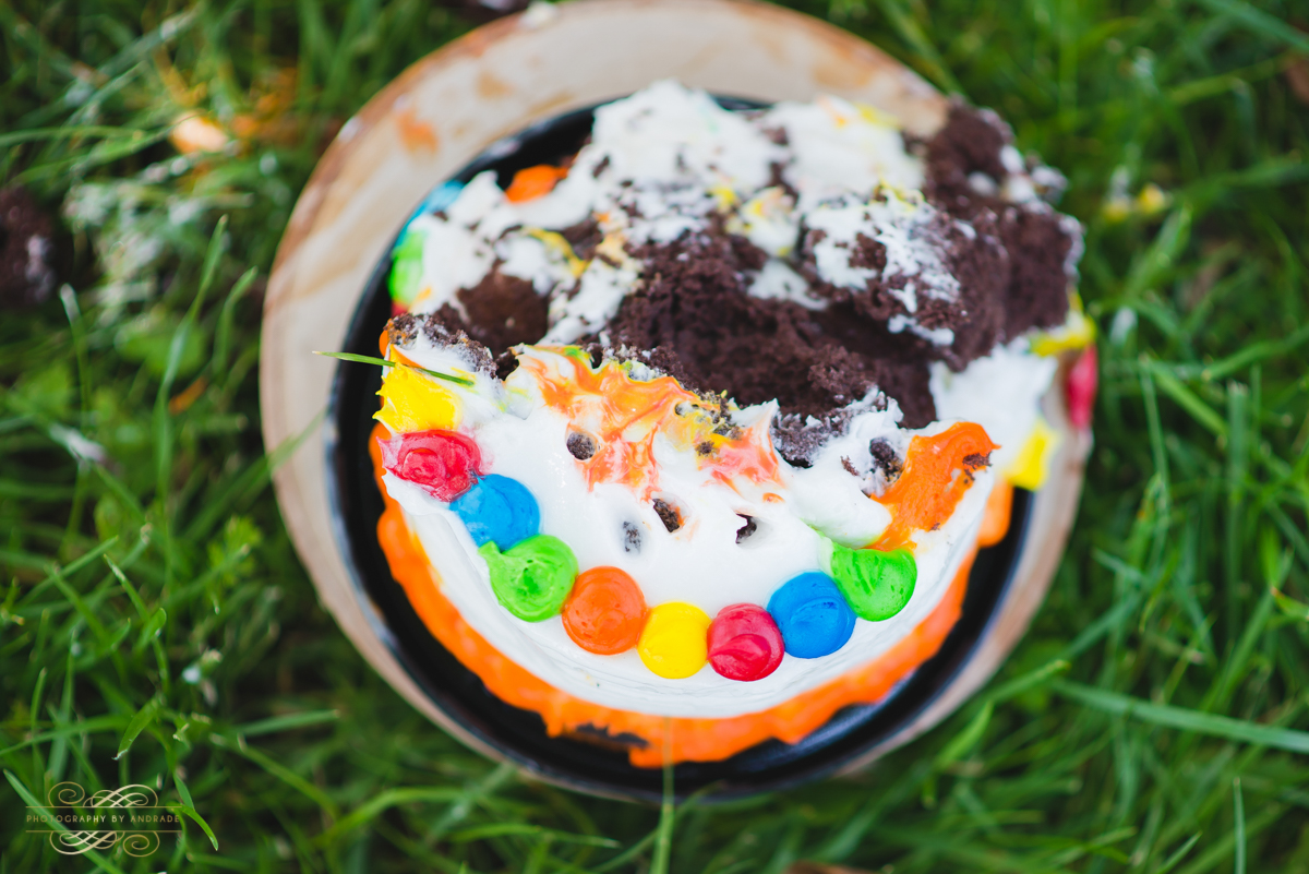 Photography By Andrade Birthday Cake Smash-53.jpg