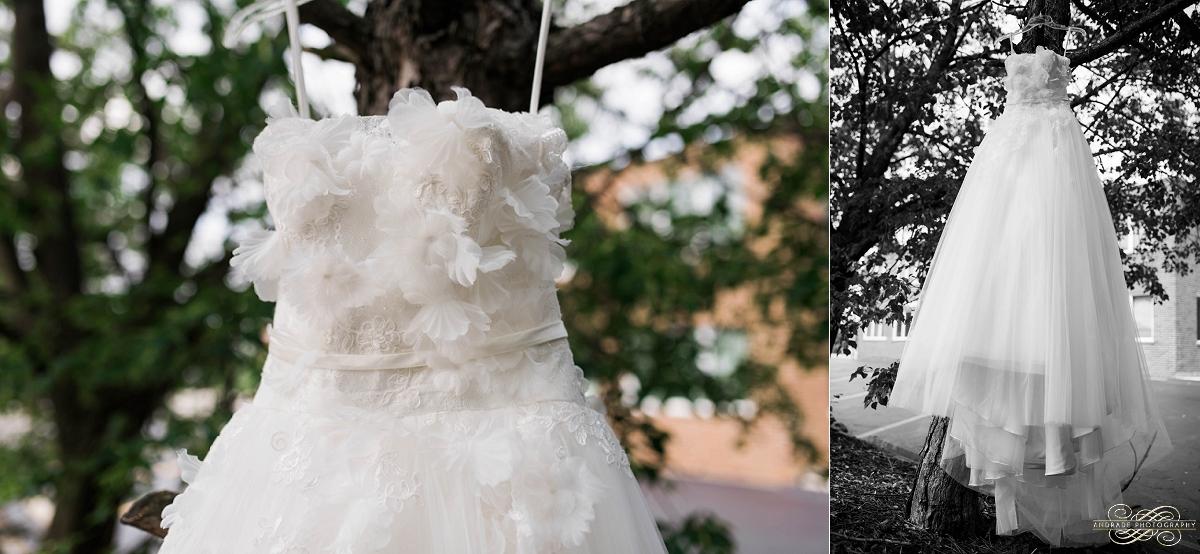 Lindsey + Eric Alpine Banquets Darien Illinois Wedding Photography_0004.jpg
