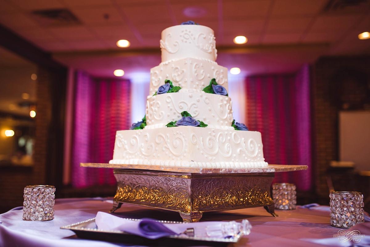 Lindsey + Eric Alpine Banquets Darien Illinois Wedding Photography_0018.jpg