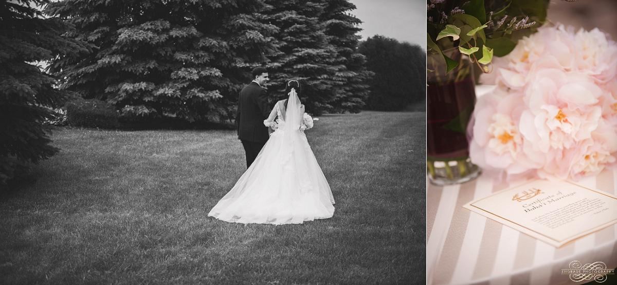 Lindsey + Eric Alpine Banquets Darien Illinois Wedding Photography_0035.jpg