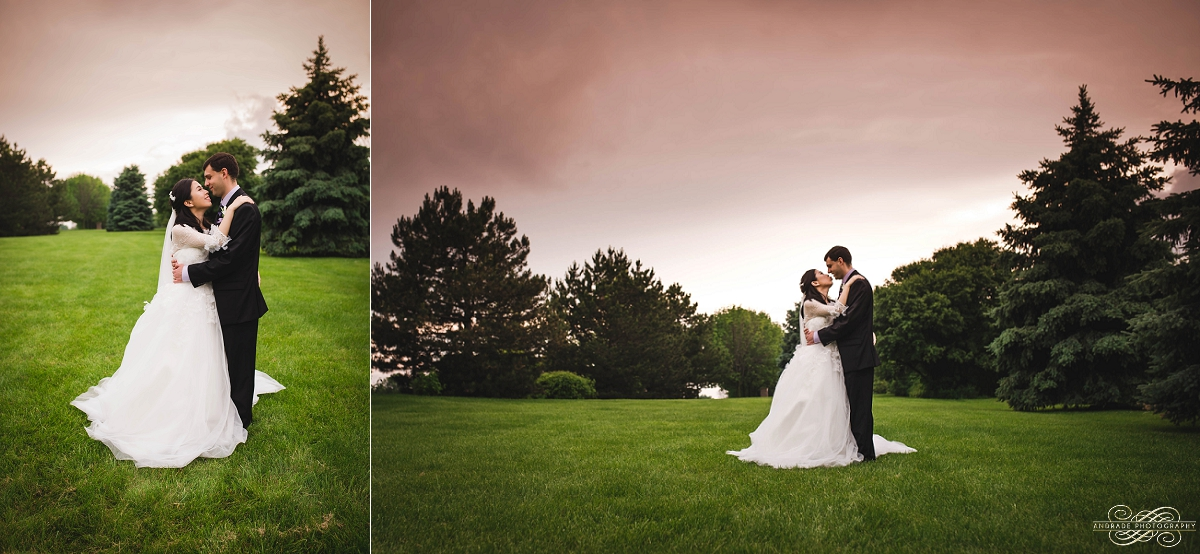 Lindsey + Eric Alpine Banquets Darien Illinois Wedding Photography_0044.jpg