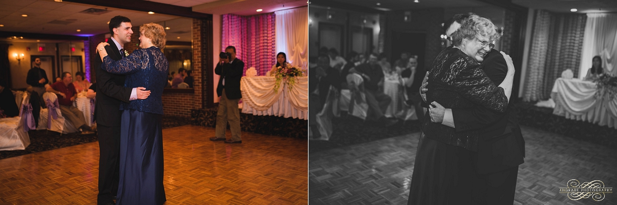 Lindsey + Eric Alpine Banquets Darien Illinois Wedding Photography_0059.jpg
