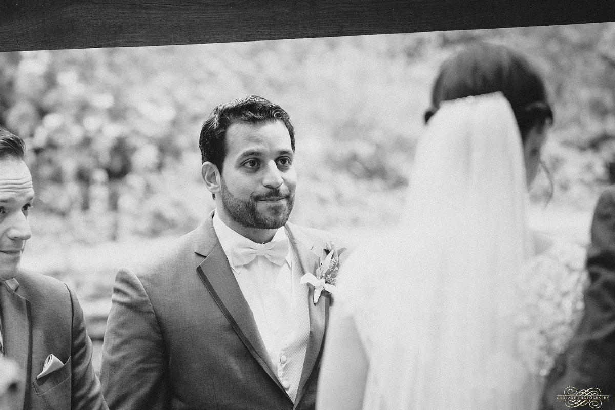 Jillian & Felix Chicago Wedding Photography at Oak & Char Trump Tower and Chicago Athletic Association_0011.jpg