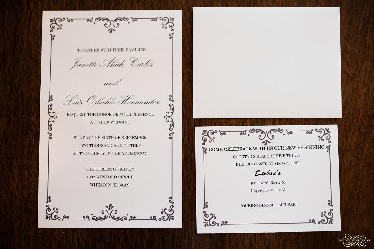 Janette + Louie Estebans Wedding Photography in Naperville - Naperville Wedding Photographer_0003.jpg