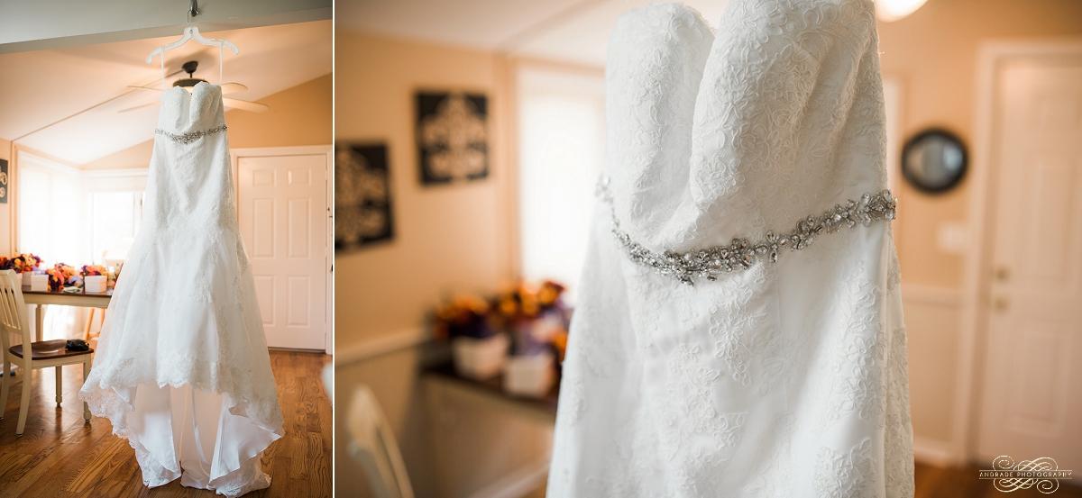 Janette + Louie Estebans Wedding Photography in Naperville - Naperville Wedding Photographer_0004.jpg