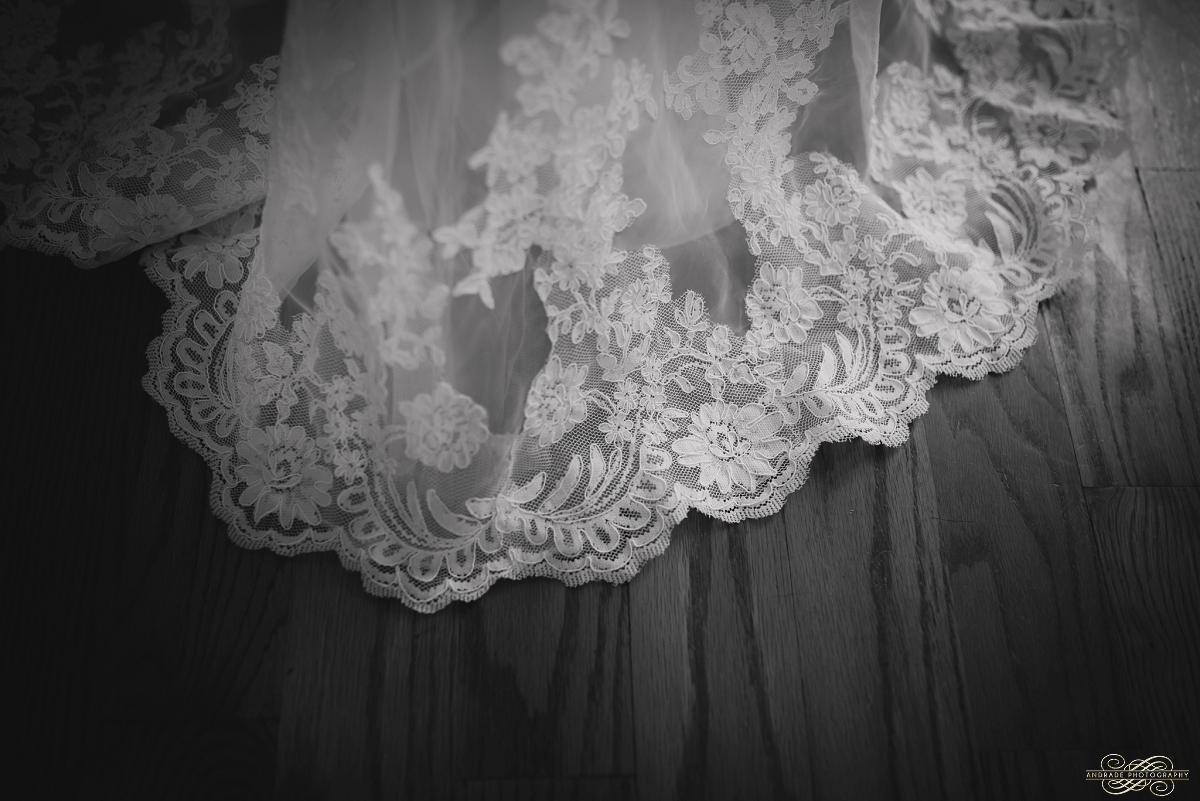 Janette + Louie Estebans Wedding Photography in Naperville - Naperville Wedding Photographer_0005.jpg