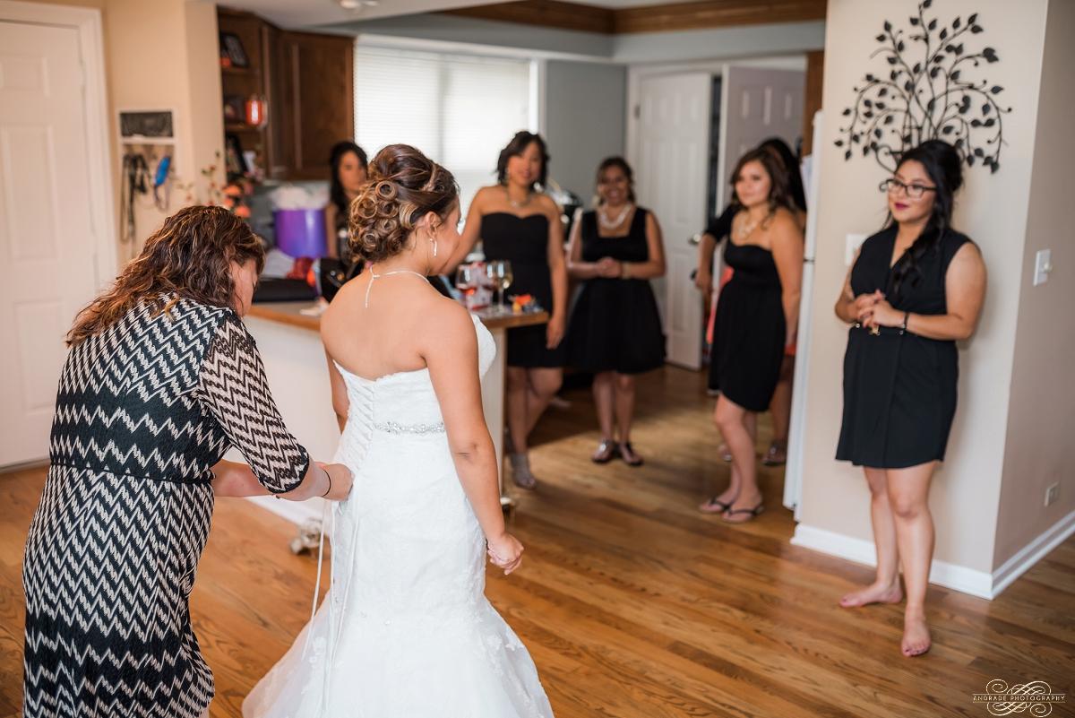 Janette + Louie Estebans Wedding Photography in Naperville - Naperville Wedding Photographer_0007.jpg