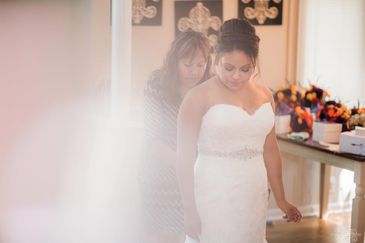 Janette + Louie Estebans Wedding Photography in Naperville - Naperville Wedding Photographer_0011.jpg