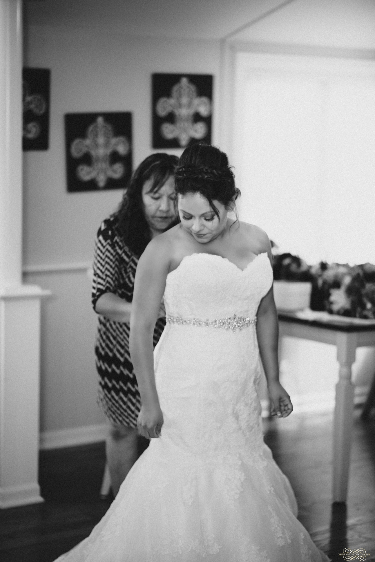 Janette + Louie Estebans Wedding Photography in Naperville - Naperville Wedding Photographer_0016.jpg