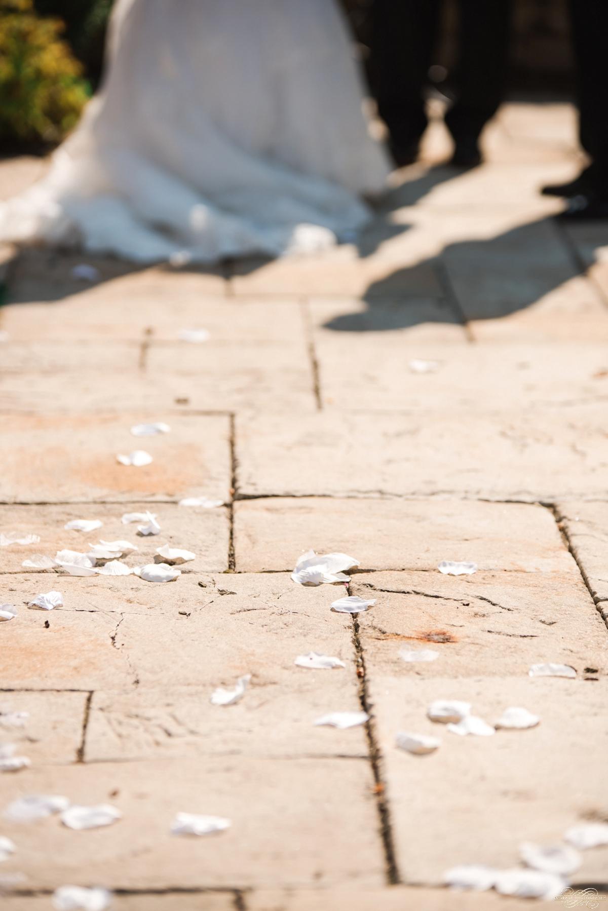 Janette + Louie Estebans Wedding Photography in Naperville - Naperville Wedding Photographer_0035.jpg