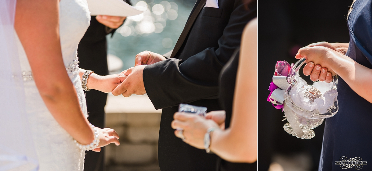 Janette + Louie Estebans Wedding Photography in Naperville - Naperville Wedding Photographer_0039.jpg