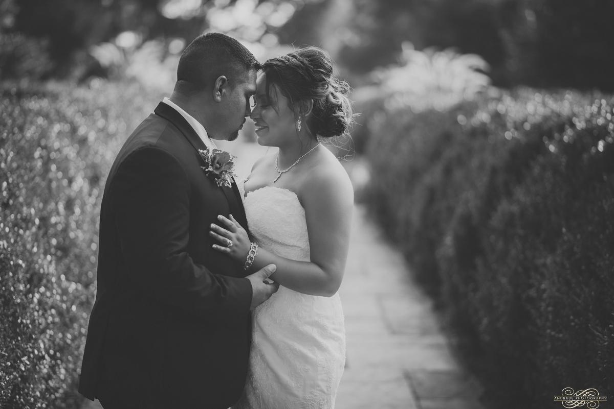 Janette + Louie Estebans Wedding Photography in Naperville - Naperville Wedding Photographer_0060.jpg