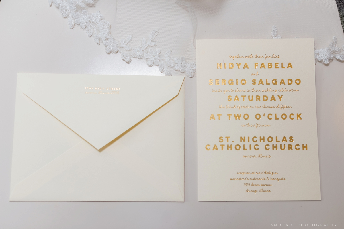 Nidya + Sergio Monasteros Wedding Chicago Illinois_0007.jpg
