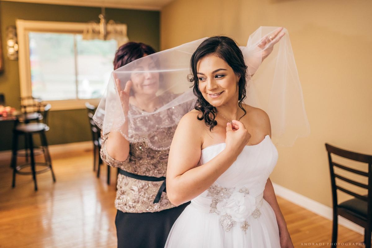 Chicago Wedding Photographer_0008.jpg