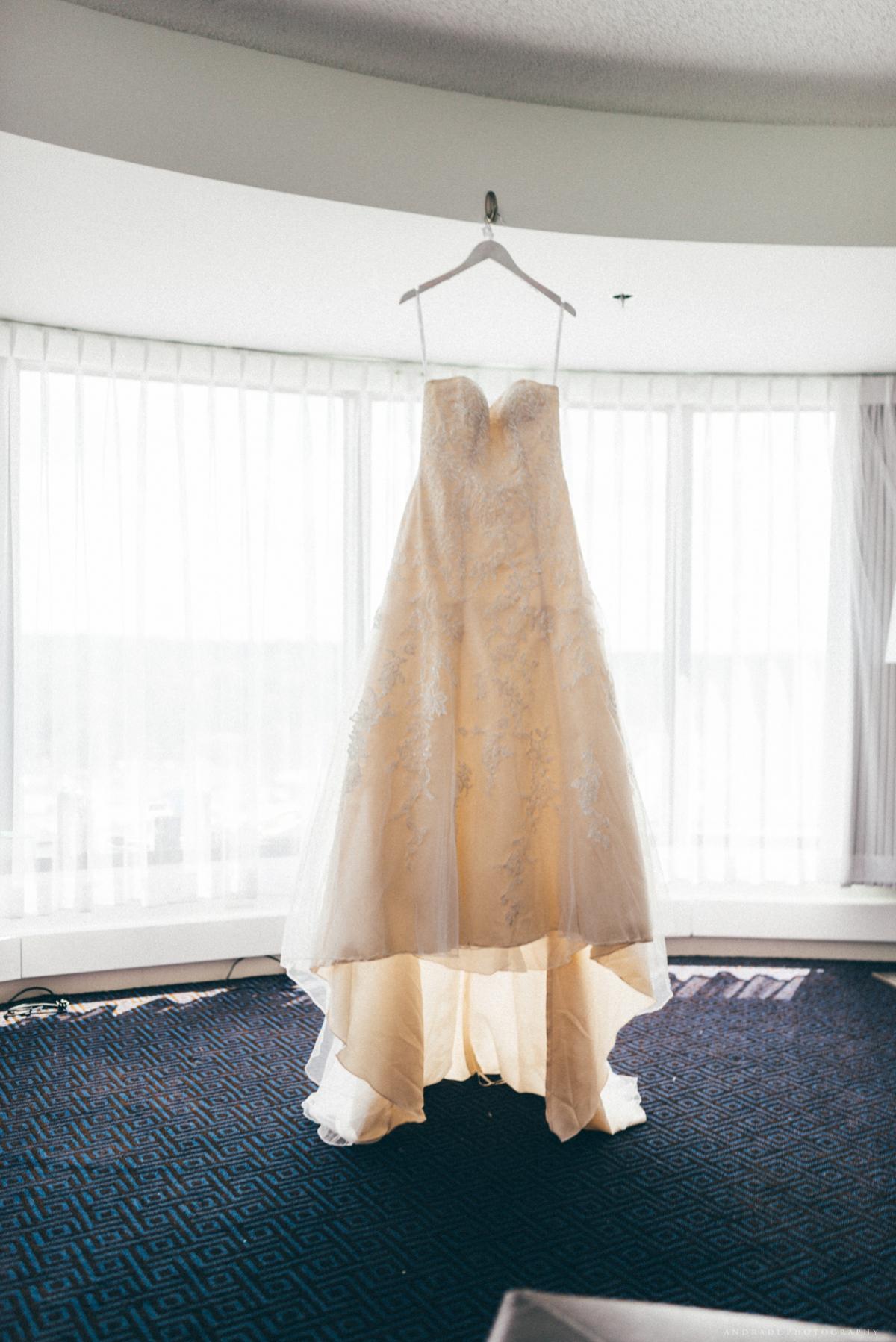 Naperville Wedding Photographer _ Maggianos Little Italy Wedding_0008.jpg