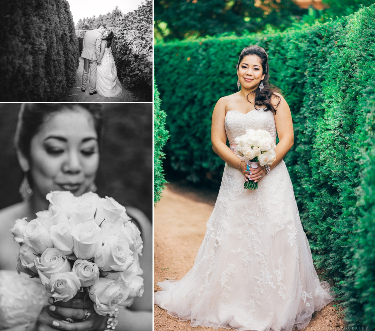 Naperville Wedding Photographer _ Maggianos Little Italy Wedding_0043.jpg