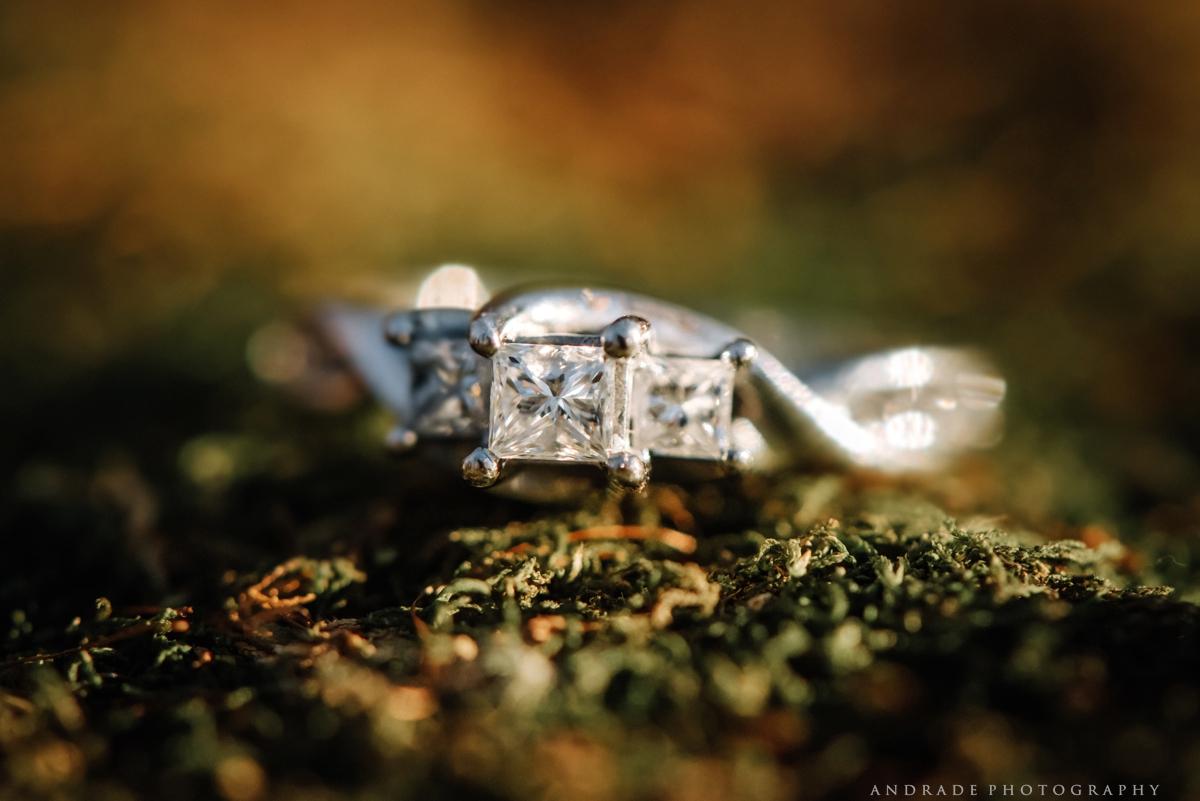 Chicago Wedding Photographer Naperville Photography_0011.jpg