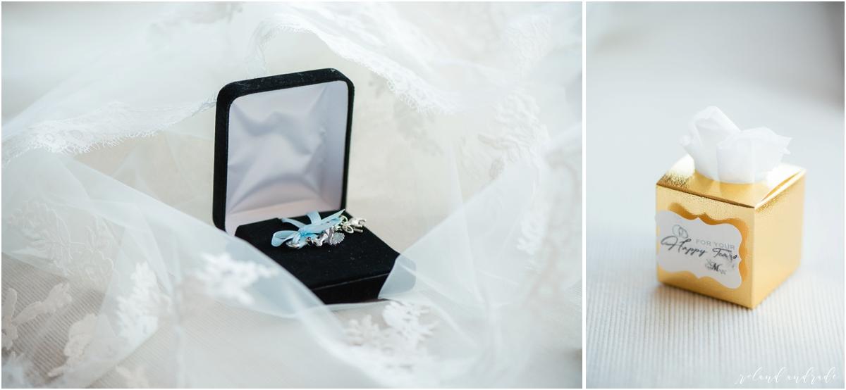 Chateau Busche Wedding in Alsip, Chateau Busche Wedding Photographer, Alsip Wedding Photography Millenium Park First Look, Trump Tower Wedding_0008.jpg
