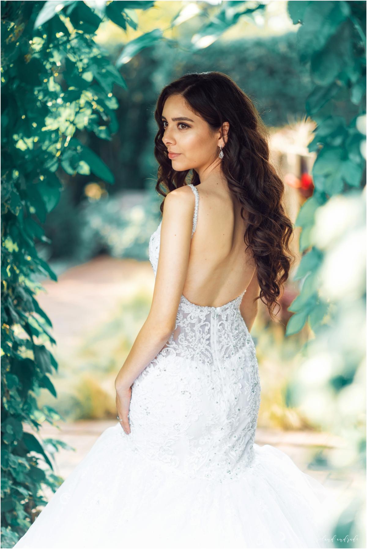 Mayra + Julian Chicago Botanic Garden Bridal Photography Chicago Wedding Photography Photographer19.jpg