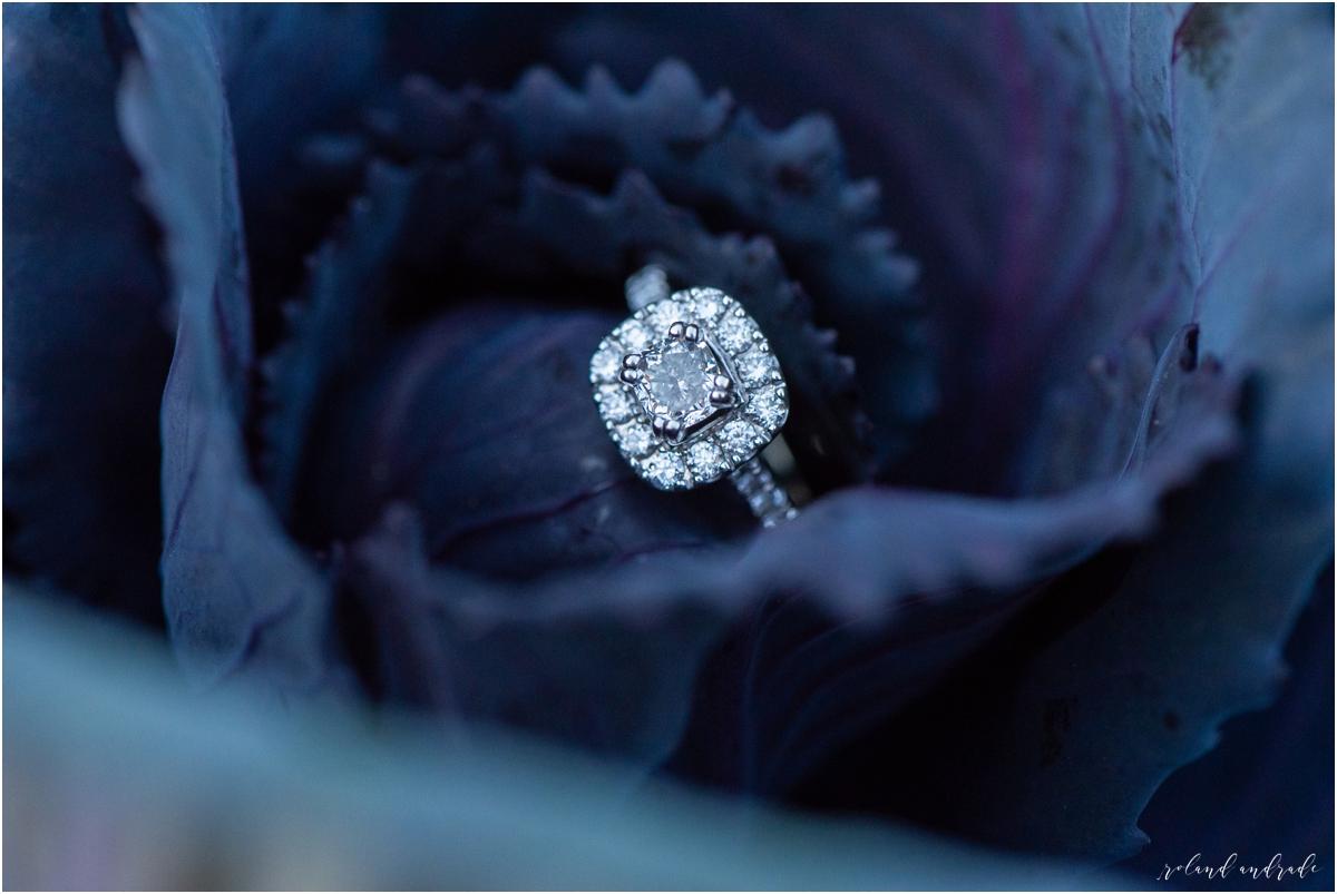 Ruby & Richard, Wheaton Engagement Session, Chicago Wedding Photographer, Naperville engagement photographer_0016.jpg