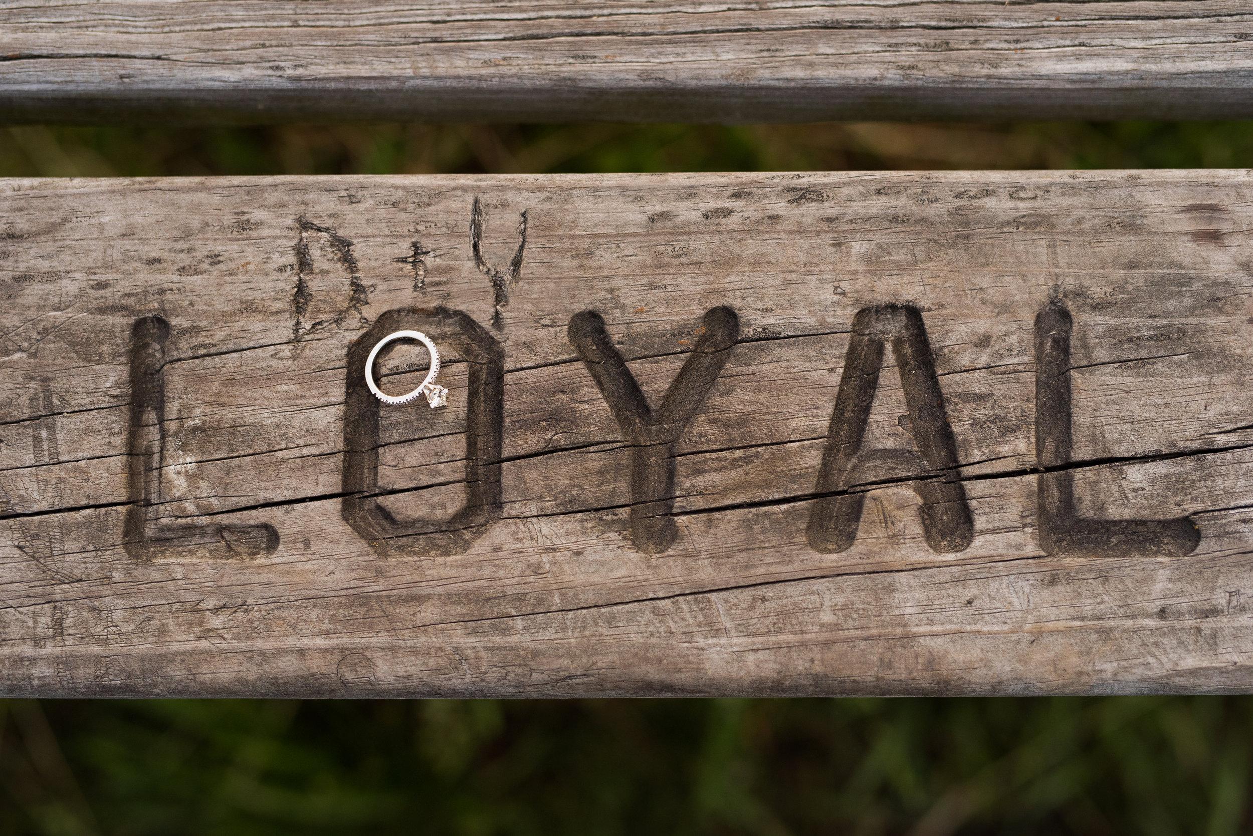 Y+D-79.jpg