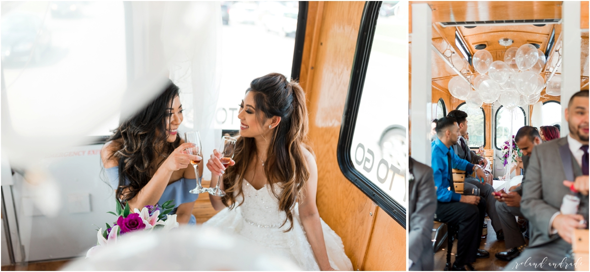 Meridian Banquets Wedding, Rolling Meadows Illinois Wedding, Chicago Wedding Photographer, Aurora Wedding Photographer, Best Photographer In Aurora, Best Photographer In Chicago_0045.jpg