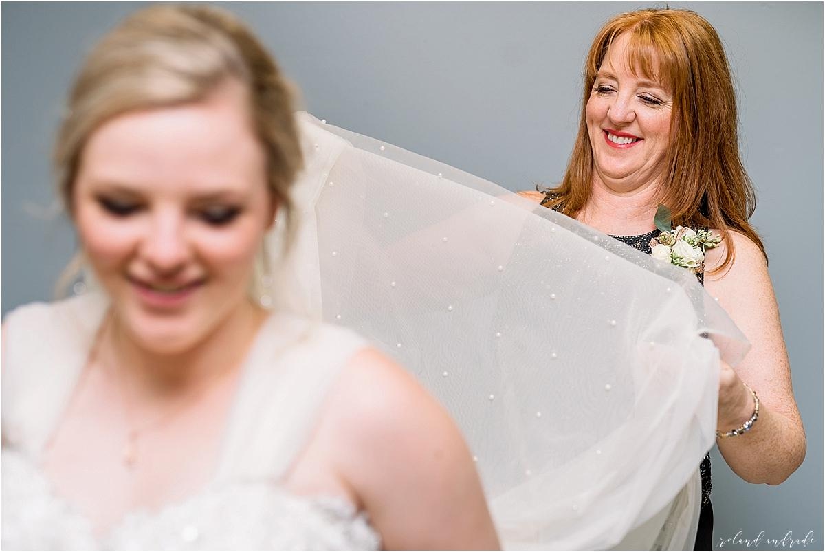 The Waterhouse Wedding, Chicago Wedding Photographer, Peoria Wedding Photographer, Best Photographer In Aurora, Best Photographer In Chicago_0009.jpg