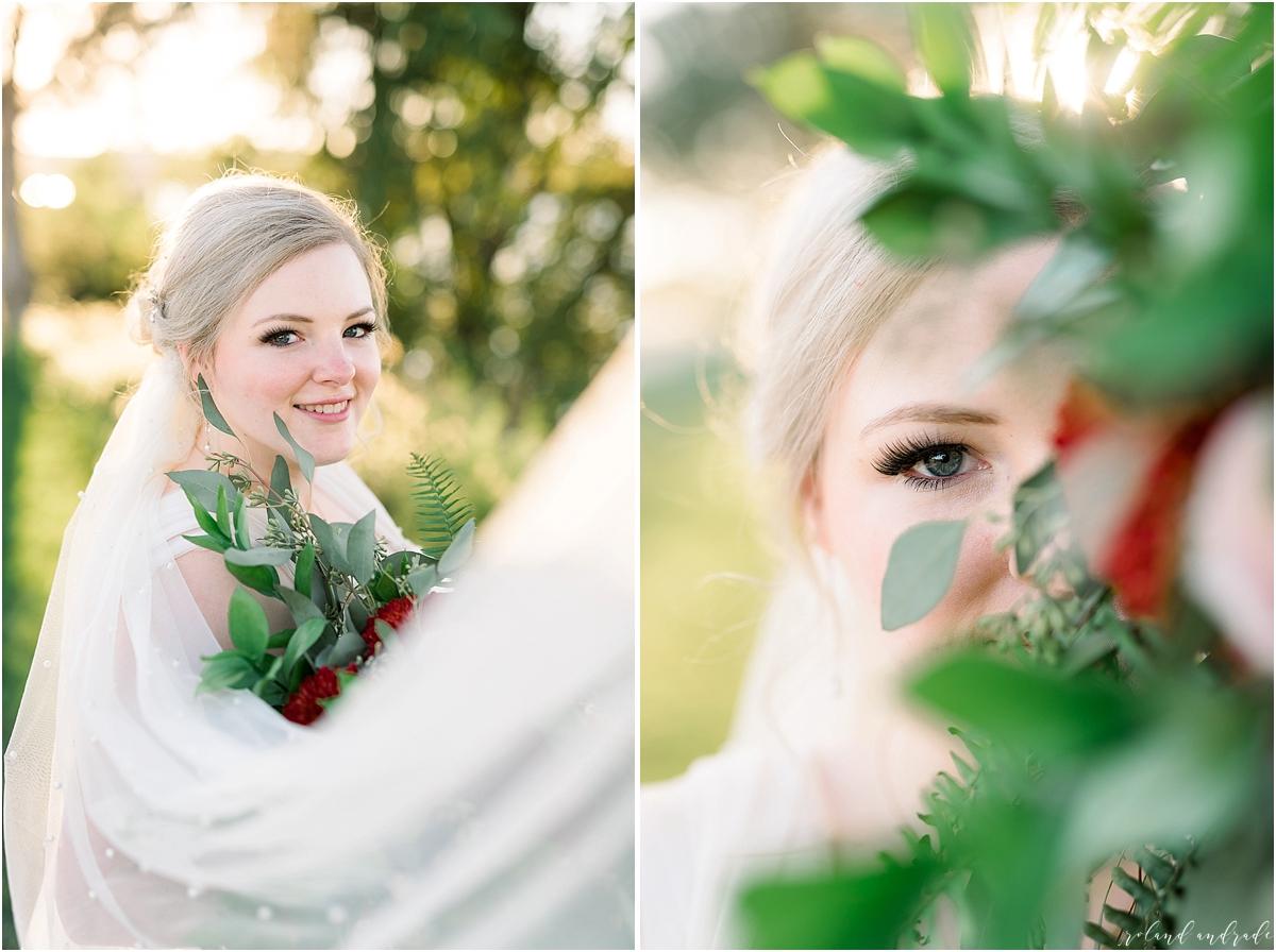 The Waterhouse Wedding, Chicago Wedding Photographer, Peoria Wedding Photographer, Best Photographer In Aurora, Best Photographer In Chicago_0068.jpg