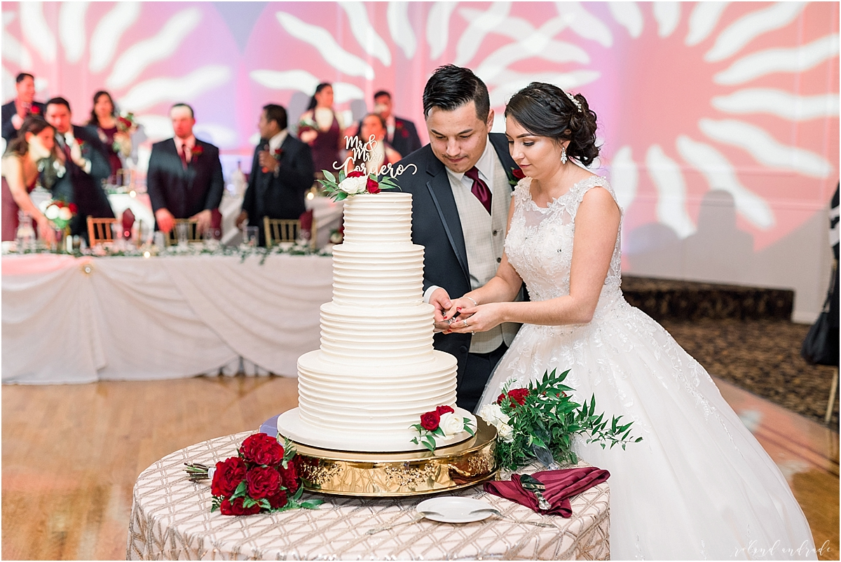 Alpine Banquets Wedding, Chicago Wedding Photographer, Naperville Wedding Photographer, Best Photographer In Aurora, Best Photographer In Chicago_0067.jpg