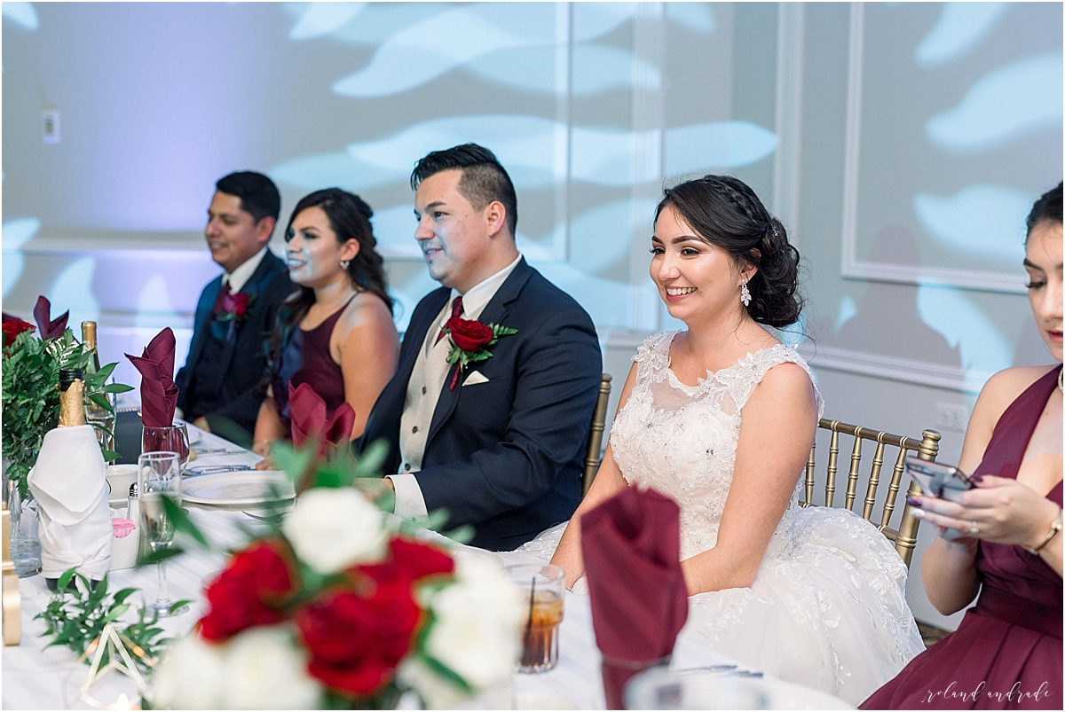 Alpine Banquets Wedding, Chicago Wedding Photographer, Naperville Wedding Photographer, Best Photographer In Aurora, Best Photographer In Chicago_0070.jpg
