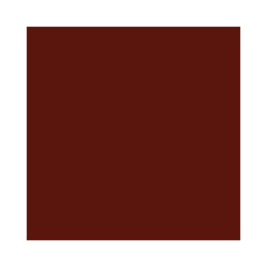 vintage elextric.png