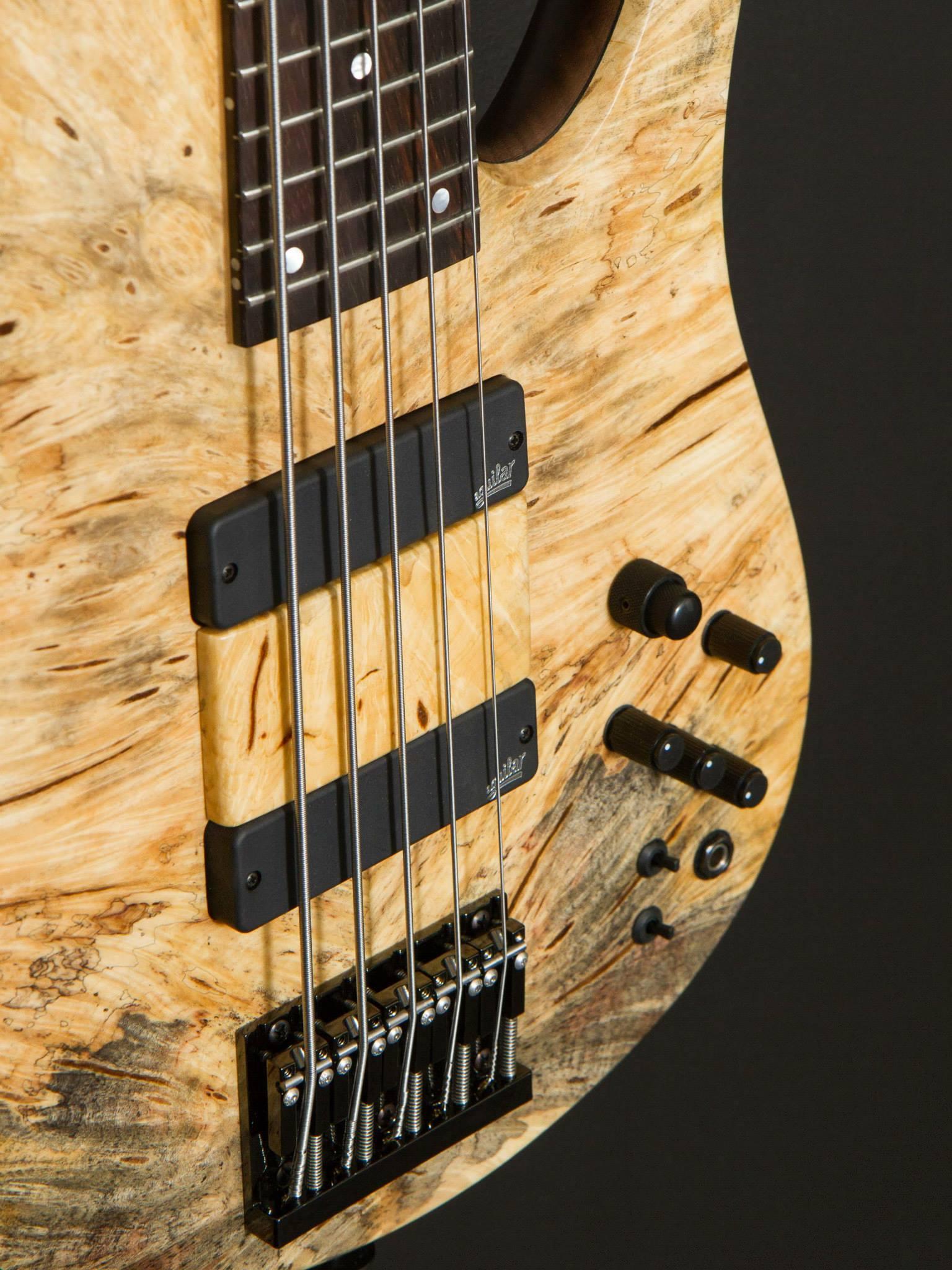 Oytun Ersan Fodera Bass 2