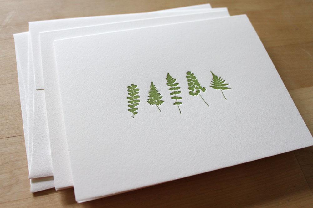 fern-cards-2.jpg